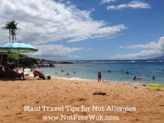 maui beach photo on a sunny day