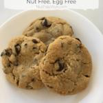 Chocolate Chip Cookies aka $250 Cookies Recipe