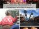 collage of Disneyland photos