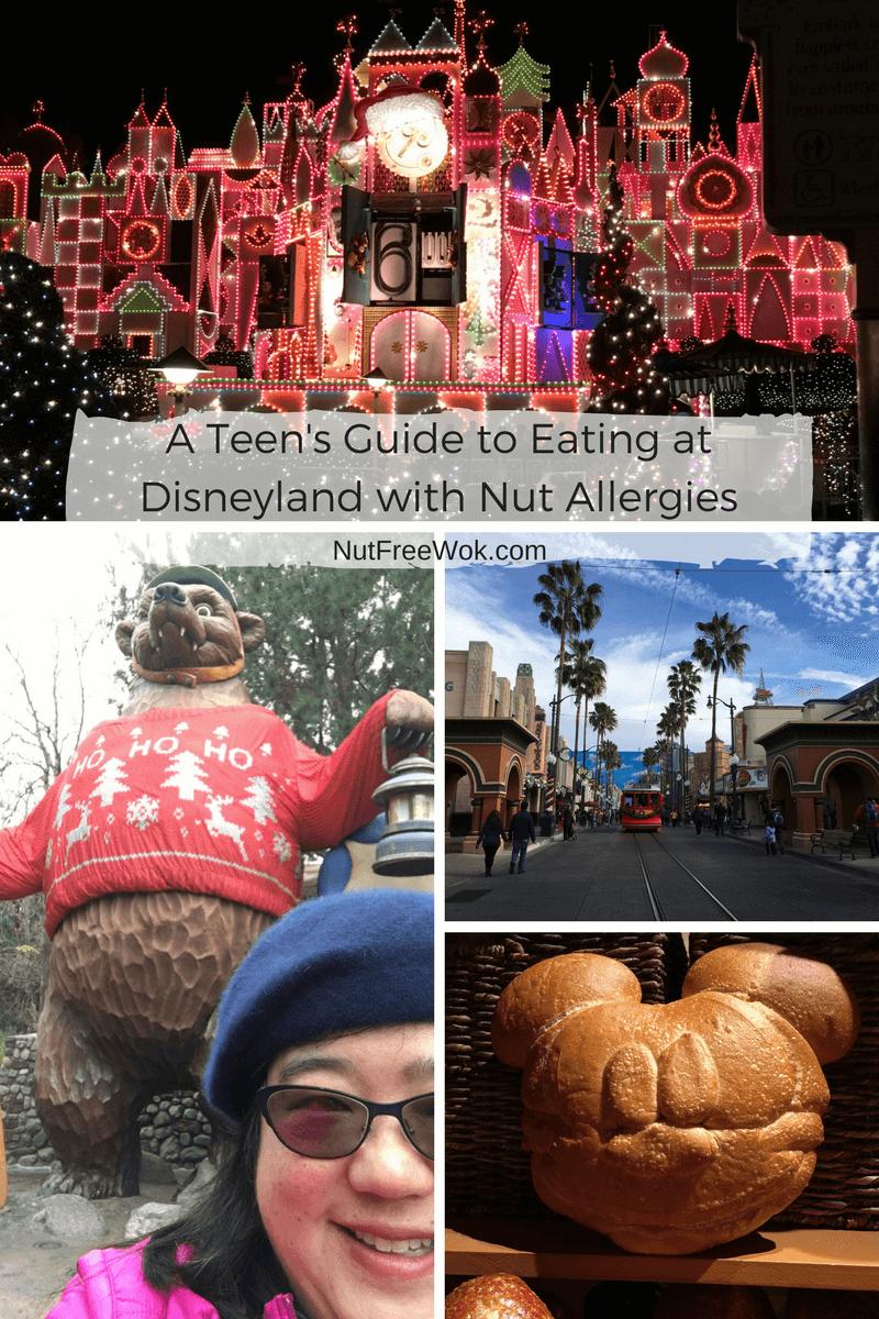 Teen's Guide Disneyland Nut Allergies