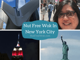 Nut Free Wok in New York City