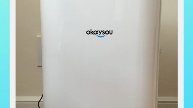 Front view of Okaysou AirMax8L Air Purifier